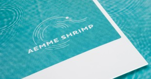 aemme_shrimp_01