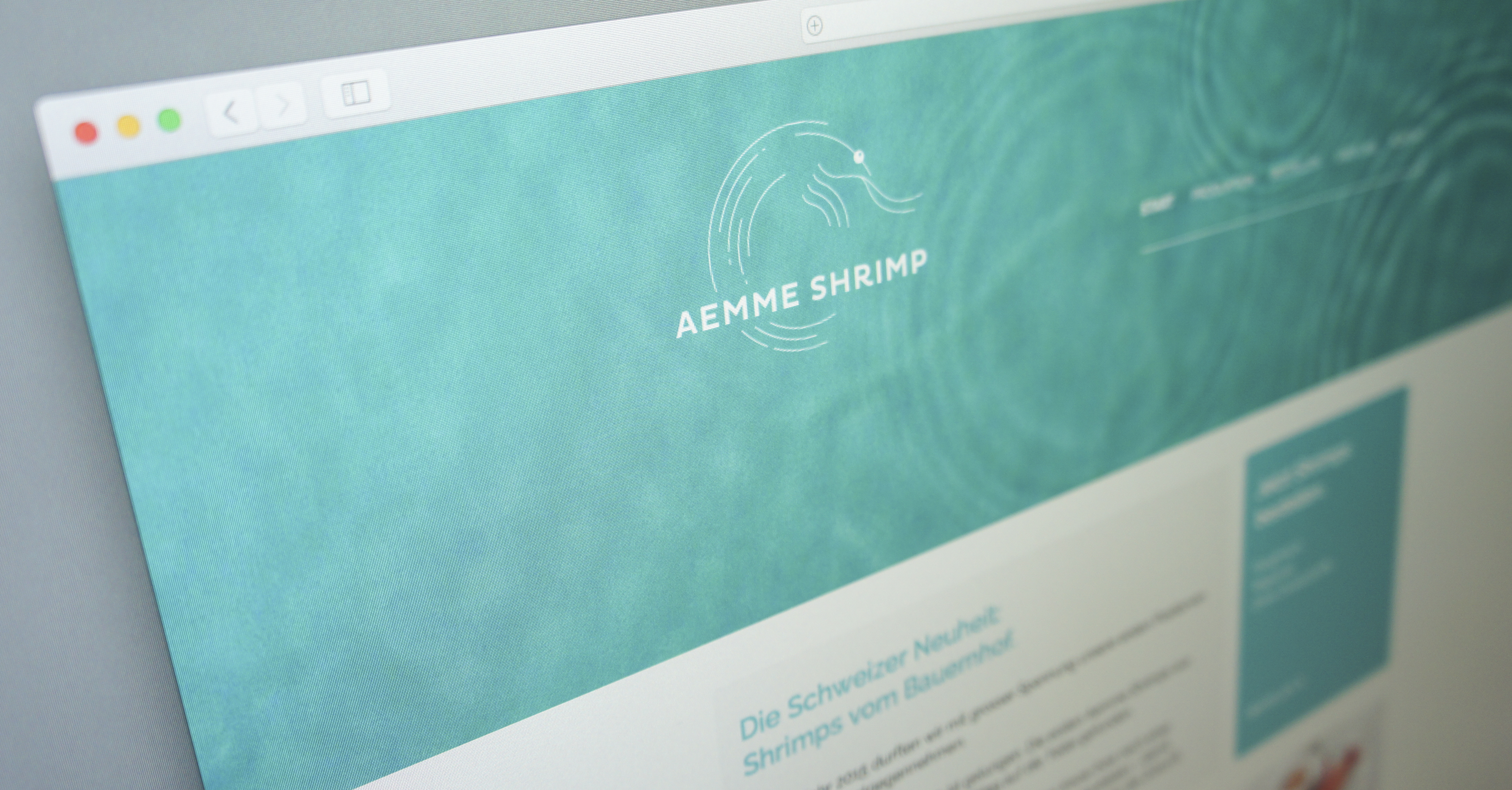 aemme_shrimp_04